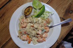 el cuyo mexico best food in yucatan mayan food fresh seafood cancun playa del carmen tulum cuisine