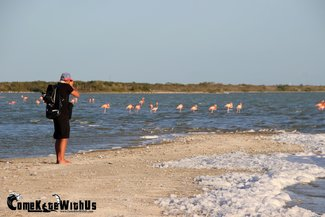 ComeKiteWithUs kiteboard kitesurf lessons El Cuyo Mexico adventure flamingo wildlife